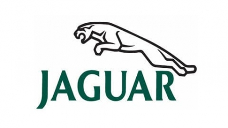 Jaguar radio code